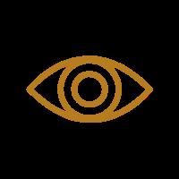 online marketing vision international and national